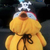 Fiesta temática pirata pollito